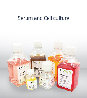 AGBL OrtaAsya offers Animal serum, albumin, salt buffers and antibiotics for tissue culture lab, vaccine production, and basic cell biology research labs.